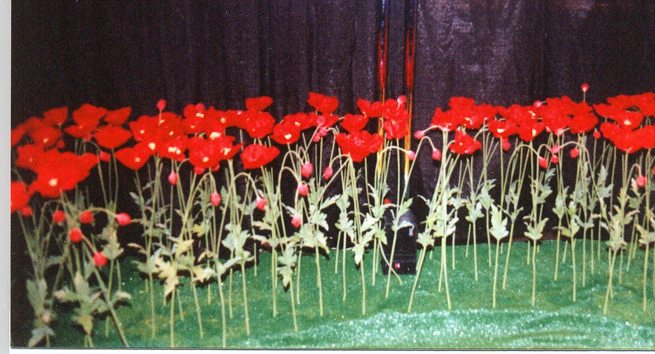 Long Plastic Tables Images Pumpkin PACSPumpkin Pi